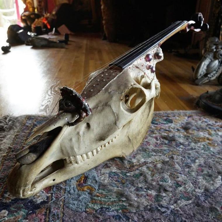 dr_paul_horse-skull-violin